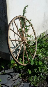 Velocipede wheel after hooping.